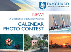 FamGuard's 2014 Calendar Photo Contest