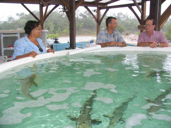 Fish_Prevalence_Sept_1_._24__2007.JPG