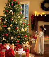 Oh-Christmas-Tree_2.jpg