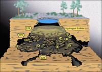 fossil-site-540x380sm.jpg