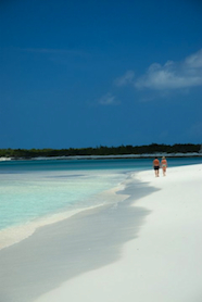 Bahamas_honeymoon_3.jpg