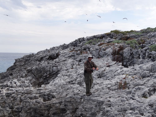 Dr.-Will-Mackin-counting-seabirds.jpg