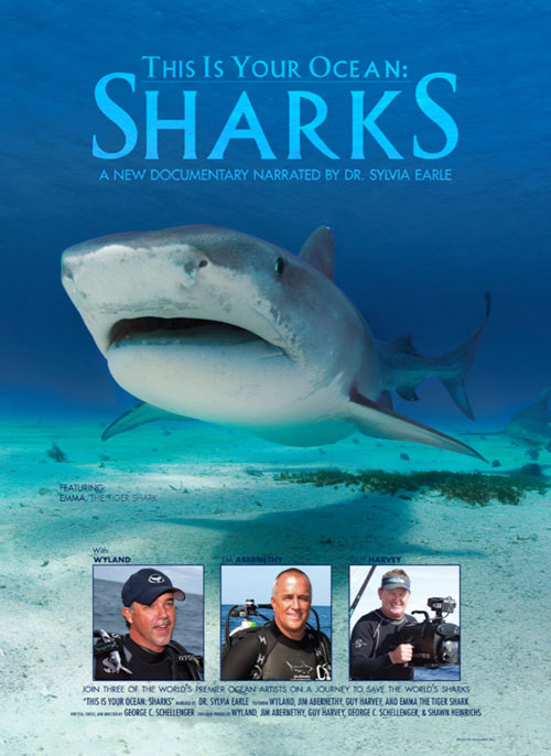 LG-This-is-Your-Oceans-Sharks-Poster_1.jpg