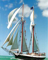 Liberty-Clipper.CKYC.jpg