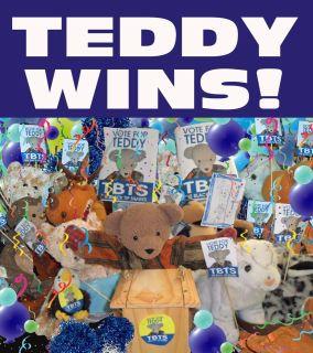 Teddy_wins.jpg