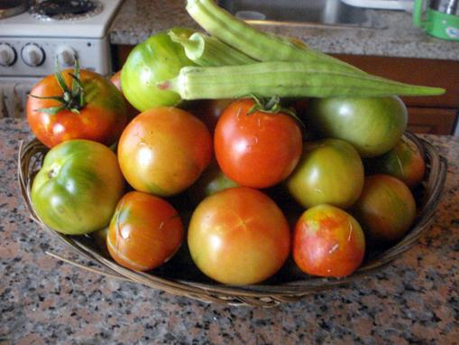 Okra-Tomato.jpg