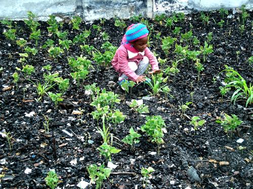 Garden-Child.jpg