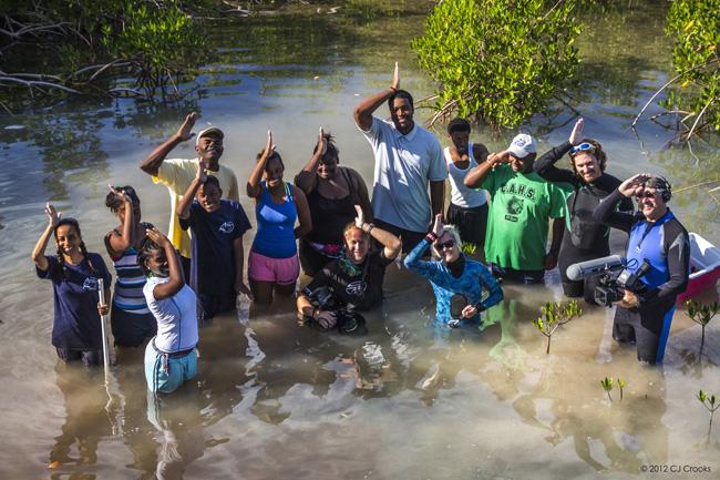 mangroveteamlower.jpg