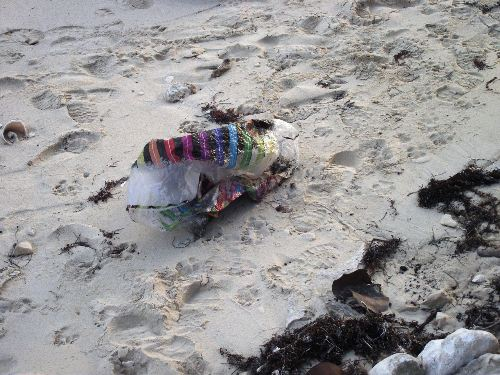 Discarded_mylar_balloon_on_Williams_town_Beach__Grand_Bahama_Island__photo_by_Gail_Woon.jpg