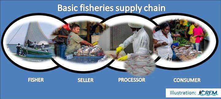 Basic-fisheries-supply-chain.jpg