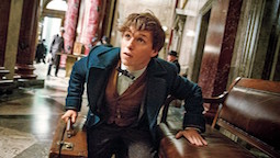 S-Eddie-Redmayne-in-Fantastic-Beasts-and-Where-to-Find-Them.jpg