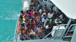 S-MigrantsOnboardHMBSLignumVitae_1_.jpg