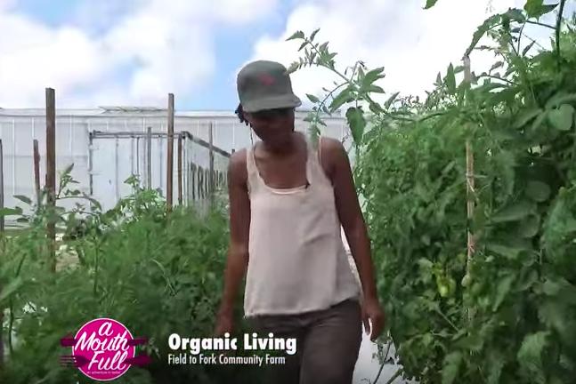 organic-LG.png