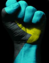 solidarity242image.png