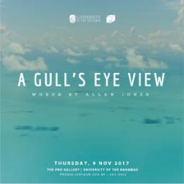 A_gulls_eye_view_1_.jpg