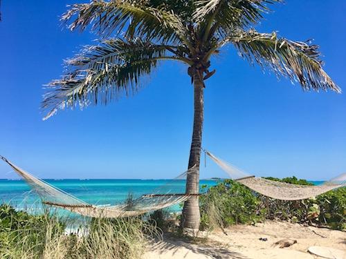 Double_Hammocks_at_The_Lookout_Sandyport_Beach_Resort.jpg