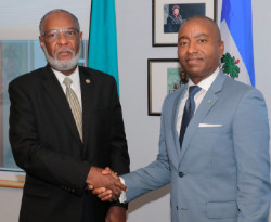Haitian_Ambassador_s_Courtesysm.jpg