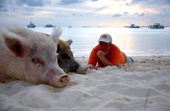 Kerry_Sanders_with_the_Swimming_Pigsrz.jpg