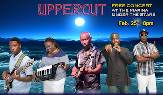 Uppercut-generic-2016-concerts-feb_1.png
