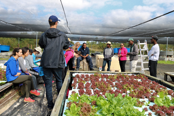 Visiting_students_tour_the_demonstration_farm__including_the_hydroponics_unit.jpg