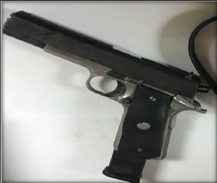 firearm_1.png