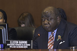 sm-RAHMING-AT-OAS-SPECIAL-MEETING.jpg