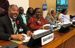 Bahamas_represented_1.jpg