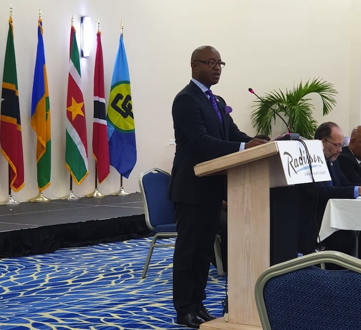 MInister_Henfield_at_Opening_of_COFCOR_in_Grenada_May_13_2019.jpg