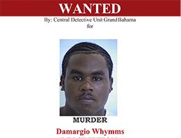 Warrant_Poster_Damargio_Whymms_sml.jpg