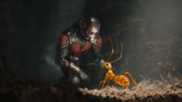 ant-man_1__1_.jpg