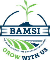 bamsi_logo_mini.png