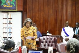 Minister_for_Health_Hon_Mary_Isaac_addresses_Parliament_1_.jpg