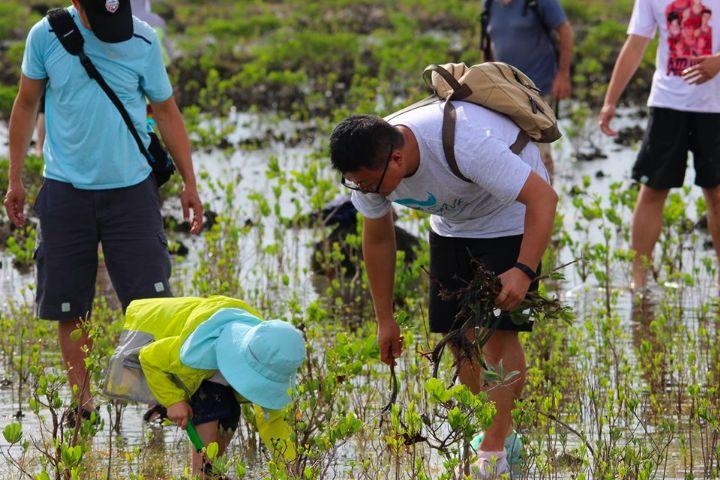 Qiantang_River_Waterkeeper_and_Earth_Successor_planting_mangroves_on_Grand_Bahama_Island.jpg