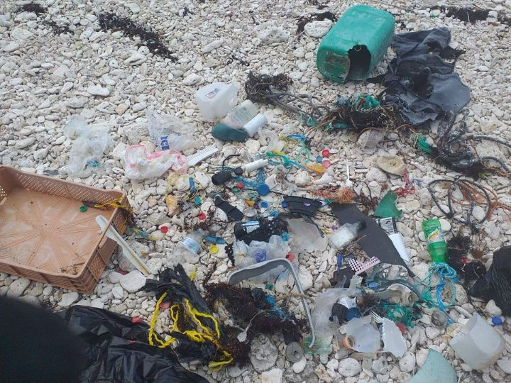 Sample_of_the_marine_debris_from_____Lovers_Beach_collected_by_our_Lone_EARTHCARE_member__Jahrin_Ellis.jpg