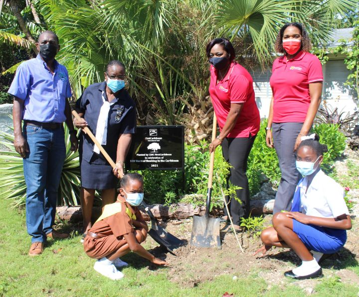 Photo_2_100_Trees_Planted_For_CIBC_FirstCaribbean_s_100th_Year_Banking_Anniversary.jpg