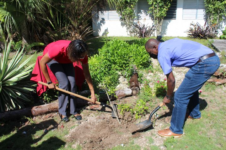 Photo_3_100_Trees_Planted_For_CIBC_FirstCaribbean_s_100th_Year_Banking_Anniversary.jpg