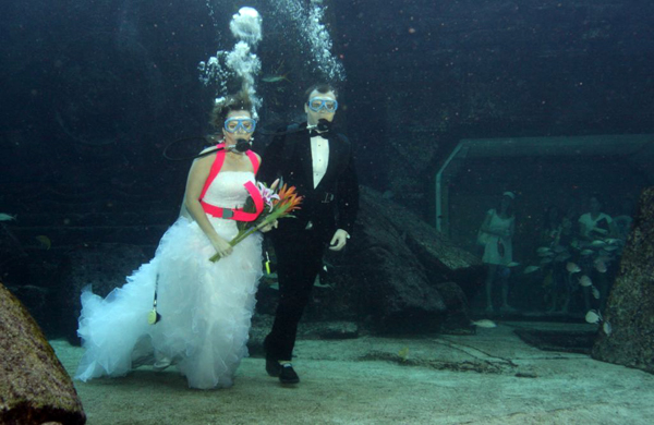 bahamas news and events underwater nuptials at atlantis