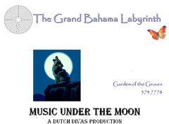 LabyrinthMusicMoonlight.JPG