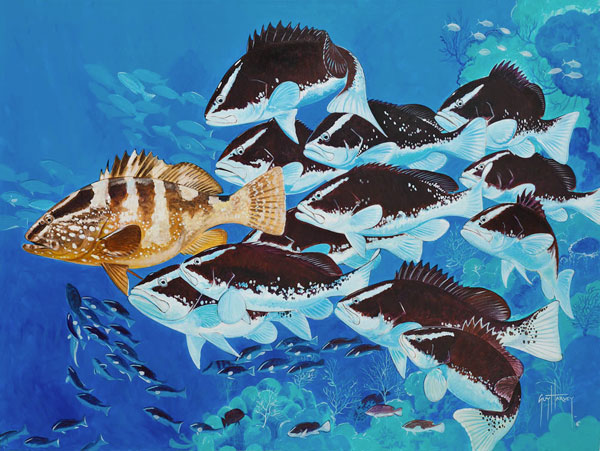A-Spawning-Nassau-Grouper-07281103-03.jpg